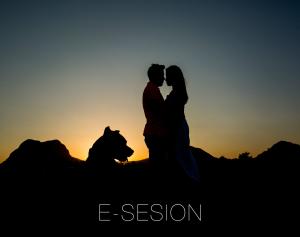 E-sesion